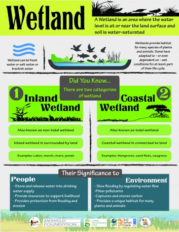 Wetland infographics Final